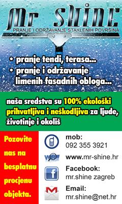 Mr. Shine 240 x 400